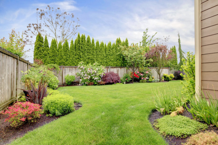 Some nutrients are essential for a healthy lawn